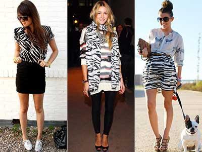 fotos de estampas de zebra