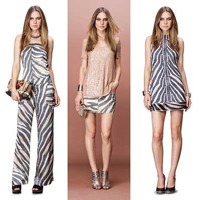 imagens de estampas de zebra