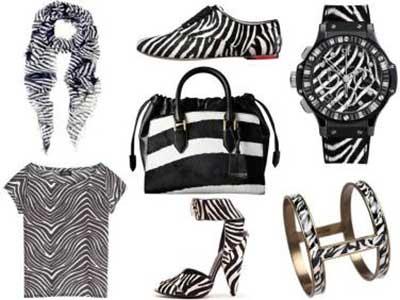 dicas de estampa de zebrinha