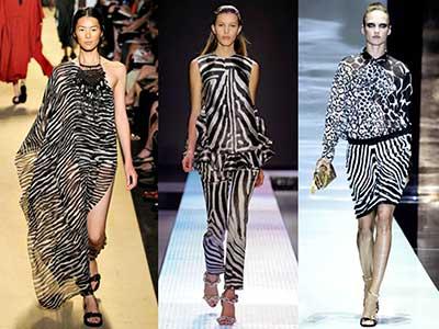 roupas com estampas de zebra